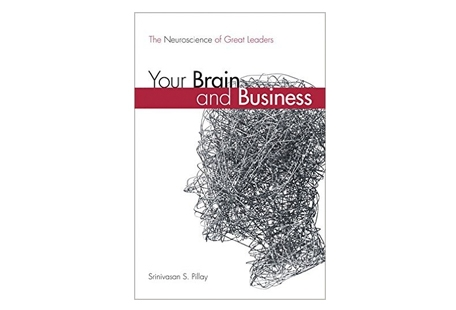 Your Brain & Business